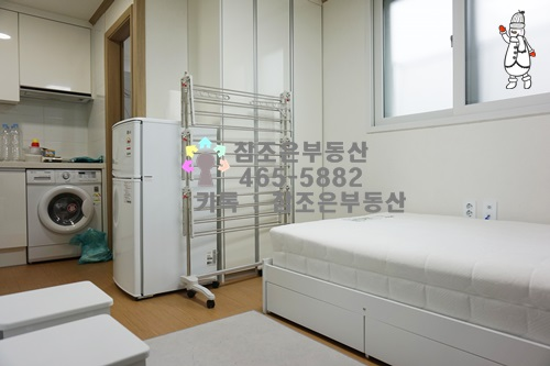 DSC05061-1.jpg